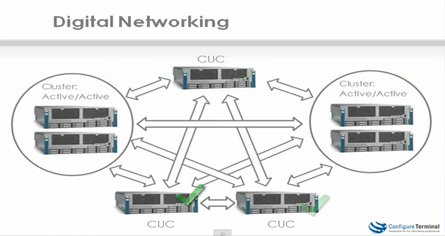 Digital Networking Video